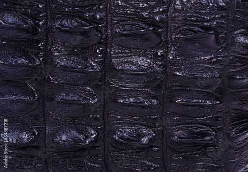 Photo  black skin crocodile textured