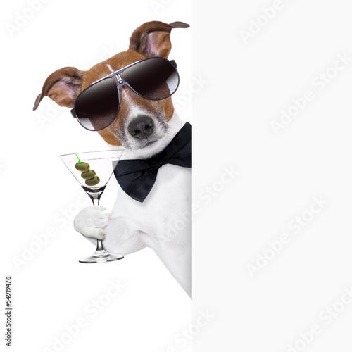 dog toasting Poster