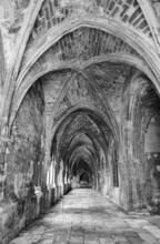 Ancient Gothic Cloister In Bla...