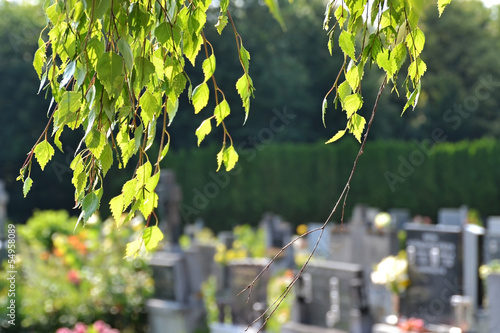 Printed kitchen splashbacks Cemetery Cemetery scene