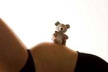 Teddy On Baby Bump