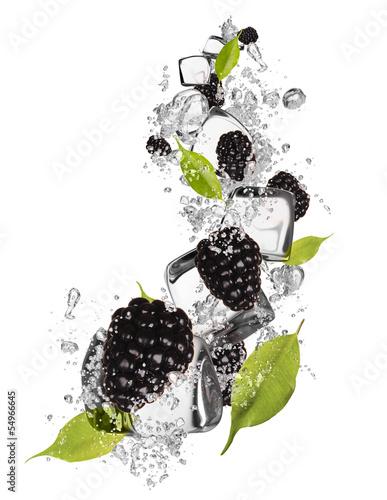 Poster Dans la glace Ice blackberries on white background