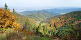 Górski las jesienią
