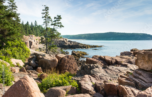 Picturesque Acadia National Park Shoreline Canvas Print