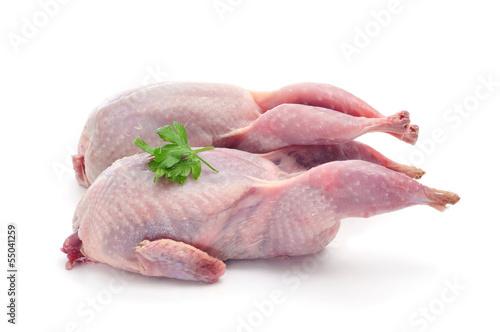 Leinwand Poster plucked quails