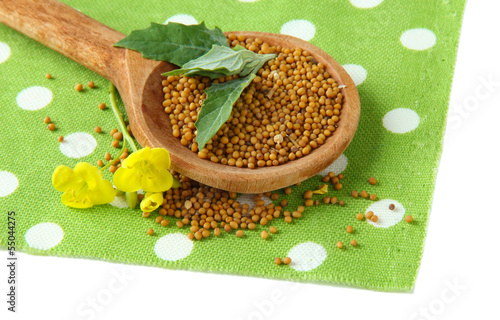 Foto op Canvas Kruiden 2 Mustard seeds in wooden spoon with mustard flower isolated