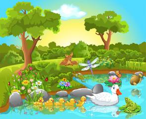 animals life on pond