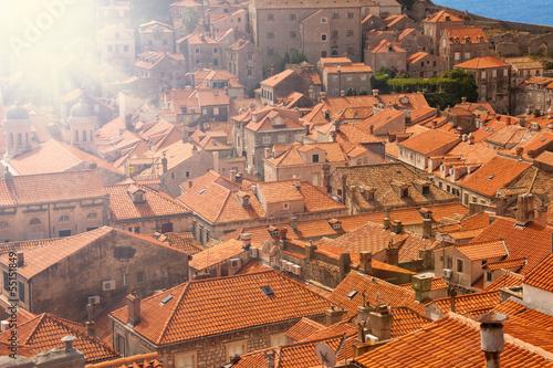 In de dag Centraal Europa Full frame of tile roofs
