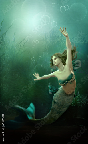 Foto auf Gartenposter Seejungfrau The little Mermaid