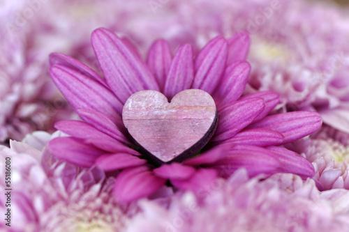 Herz in einer Blume
