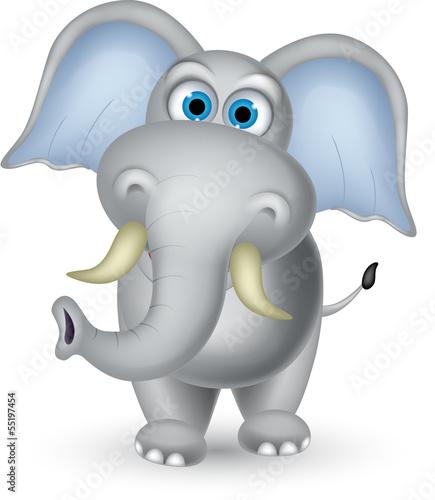 slon-kreskowka-pozowanie