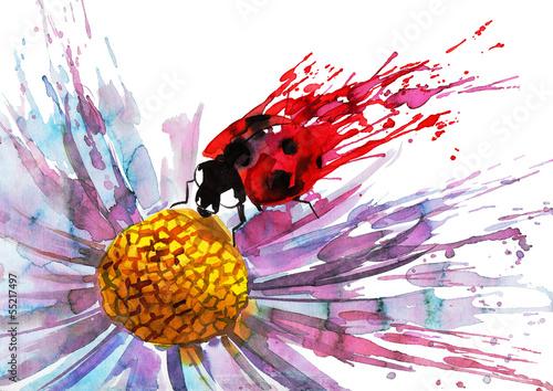 biedronka-na-kwiatku-akwarela