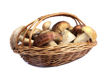 Mushrooms In A Wicker Basket On A White Background.