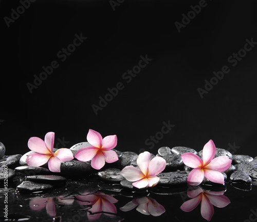 Photo sur Toile Spa Stone spa and healthcare concept-frangipani and black pebbles