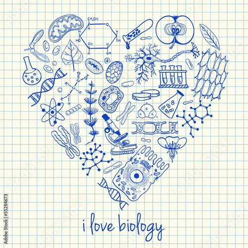 Fotografie, Tablou  Biology drawings in heart shape
