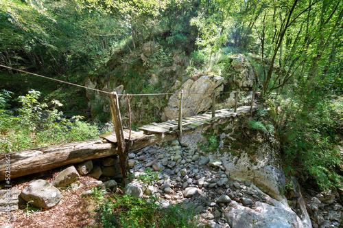 drewniany-most-w-lesie