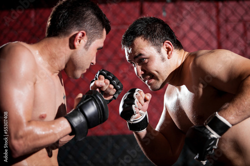 Obrazy MMA   mma-fighters-during-a-match