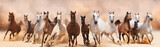 Fototapeta Panels - A herd of horses running on the sand storm