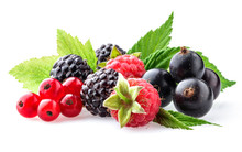 Collection Of Wild Berries On ...