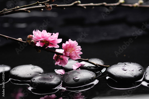 Fotobehang Spa Zen pebbles. Stone spa , cherry tree branch