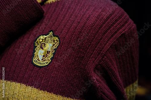 Fotografia, Obraz Gryffindor sweater