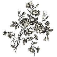Bouquet De Fleurs XVIIIèmé S...