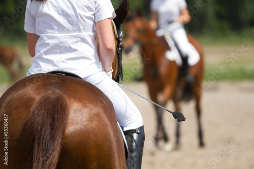 La pose en embrasure Equitation Dressage horse