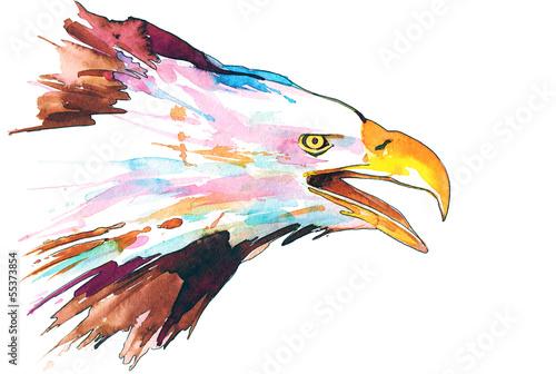 Photo  eagle