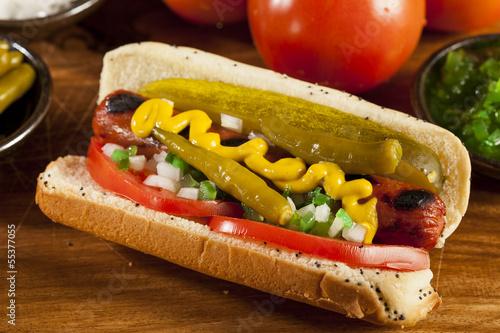 Fotografia Chicago Style Hot Dog