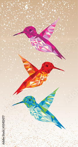 Foto auf Gartenposter Geometrische Tiere Colorful humming birds illustration.