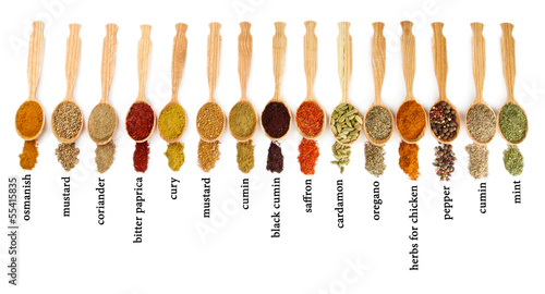 Many different spices with their name in wooden spoons isolated