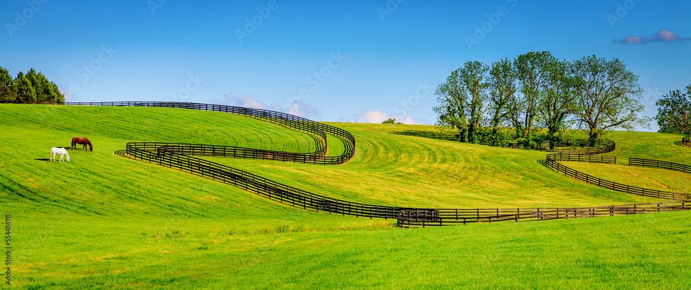 Fototapeta Horse farm fences