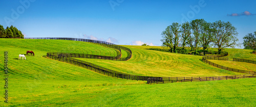Horse farm fences Fotobehang