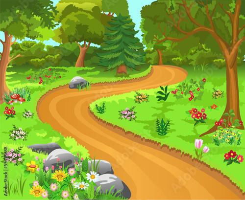 path in the forest - fototapety na wymiar
