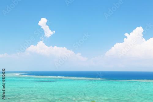 Recess Fitting Green coral サンゴの海