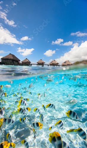 Tuinposter Koraalriffen Tropical paradise