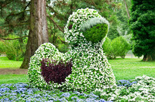 Flower Bed In The Shape Of Duck