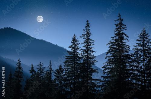 Photo mystical moon