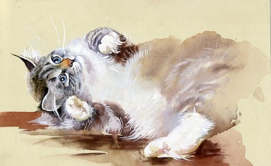 FototapetaWatercolor Animal Collection: Cat