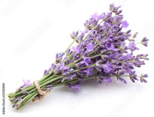 Tuinposter Lavendel Bunch of lavender.