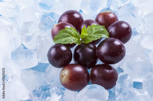 Poster Dans la glace Fruits