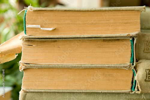 Close-up of old books in a library Canvas Print