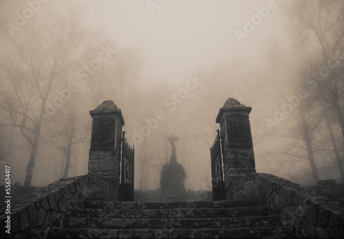 Photo sur Toile Cimetiere Scary old entrance to forest graveyard in dense fog