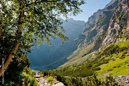 Na szlaku w górach