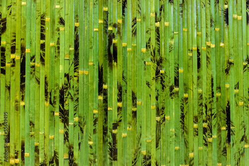Papiers peints Bambou bamboo background