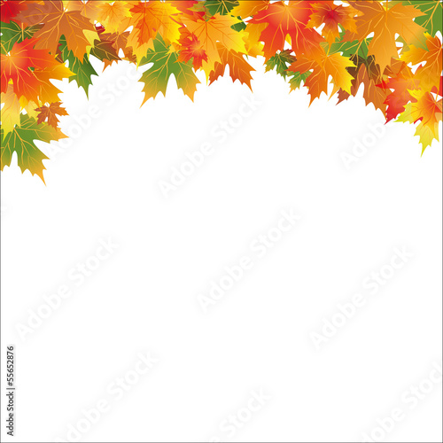 Photo white autumn background with colorful leaf