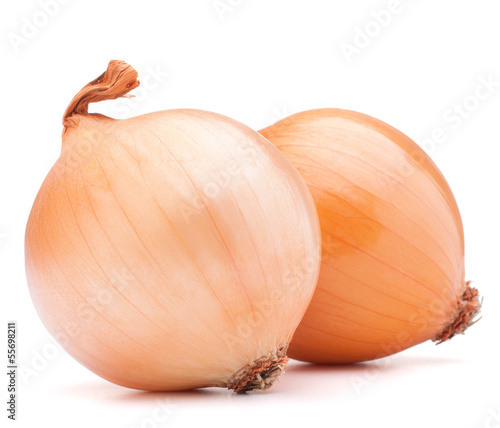 Photographie Gold onion vegetable bulbs