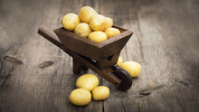 Potatos In A Miniature Wheelbarrow