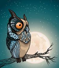 Cartoon Owl And Full Moon.