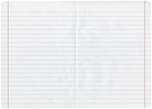 Sheet Of Looseleaf Paper